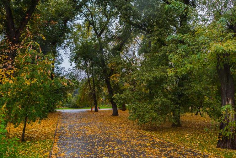 Опубликованные волшебные фото осеннего города