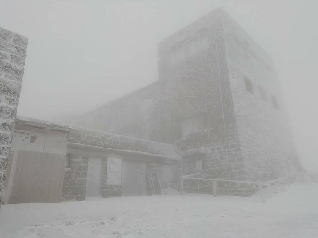 В Карпаты пришла настоящая зима: опубликовано фото метели
