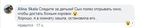 ''Лезут во все щели!'' Жителей Киева атаковали полчища жутких насекомых