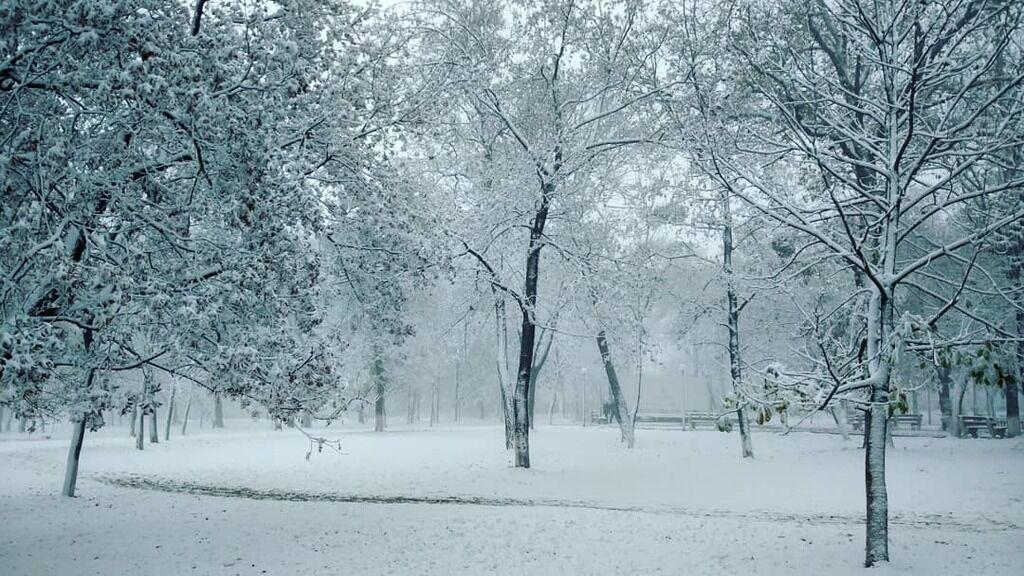 В Крыму выпал первый снег: появились фото
