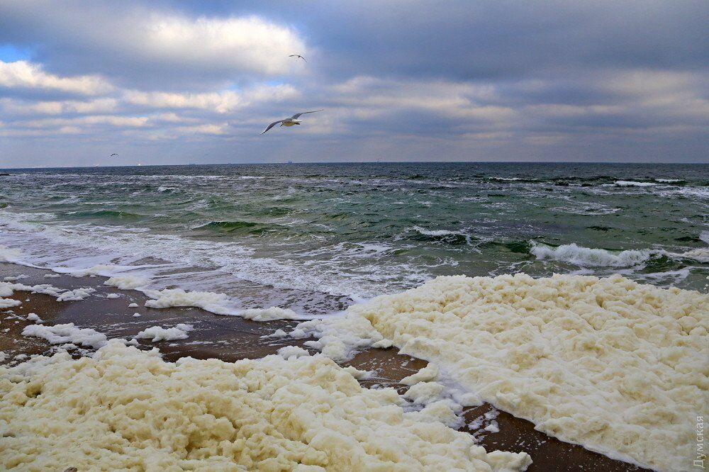 На пляжах Одеси помітили незвичайне явище
