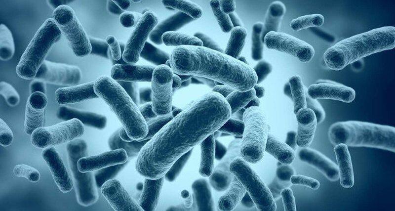 Резистентными называют бактерии, устойчивые к антибиотикам