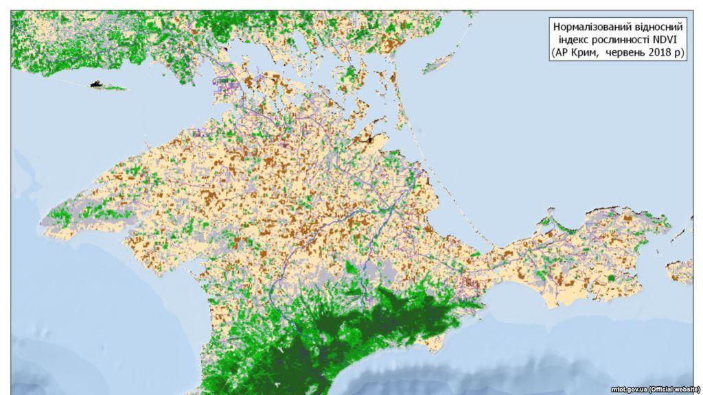 Стан лісів в Криму в 2018 році