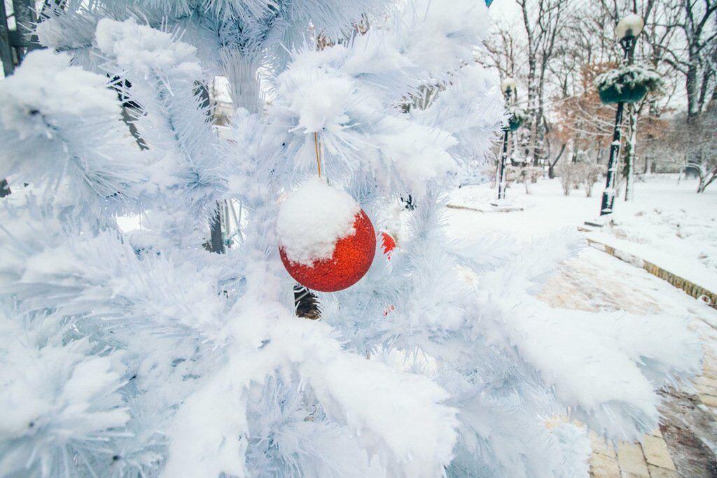 Київ засипало снігом: барвисті фото зимової столиці