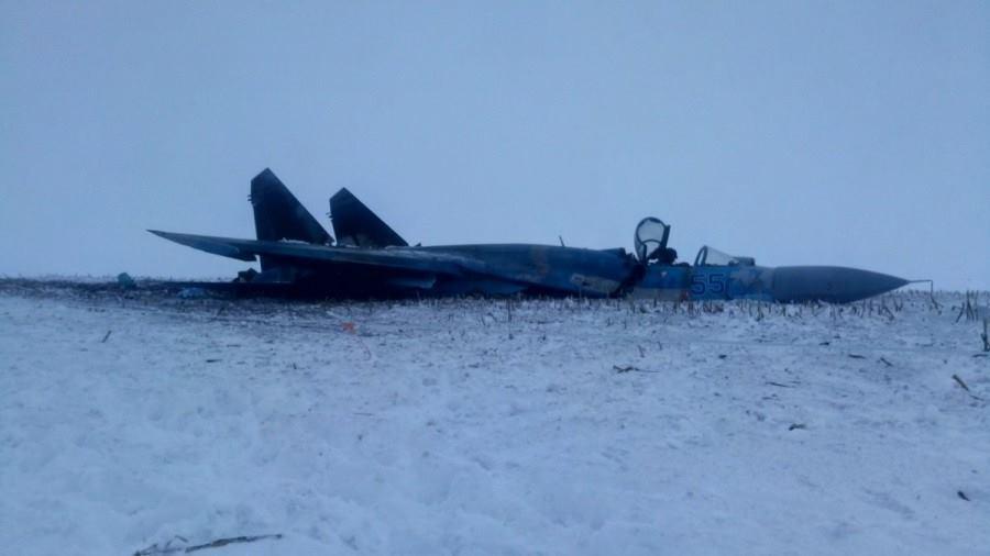 Падіння Су-27 під Житомиром: з'явилися фото з місця НП