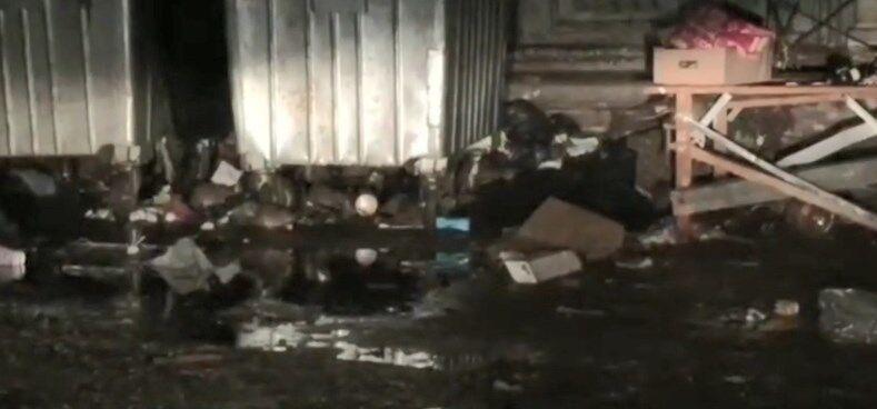 ''Коммунальщикам страшно!'' В центре Киева заметили нашествие крыс