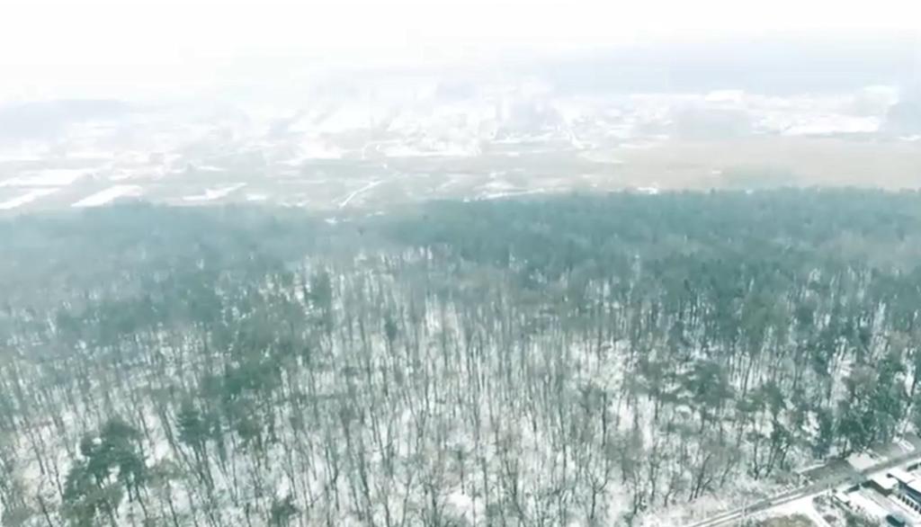 Лес, который хотят застроить высотками