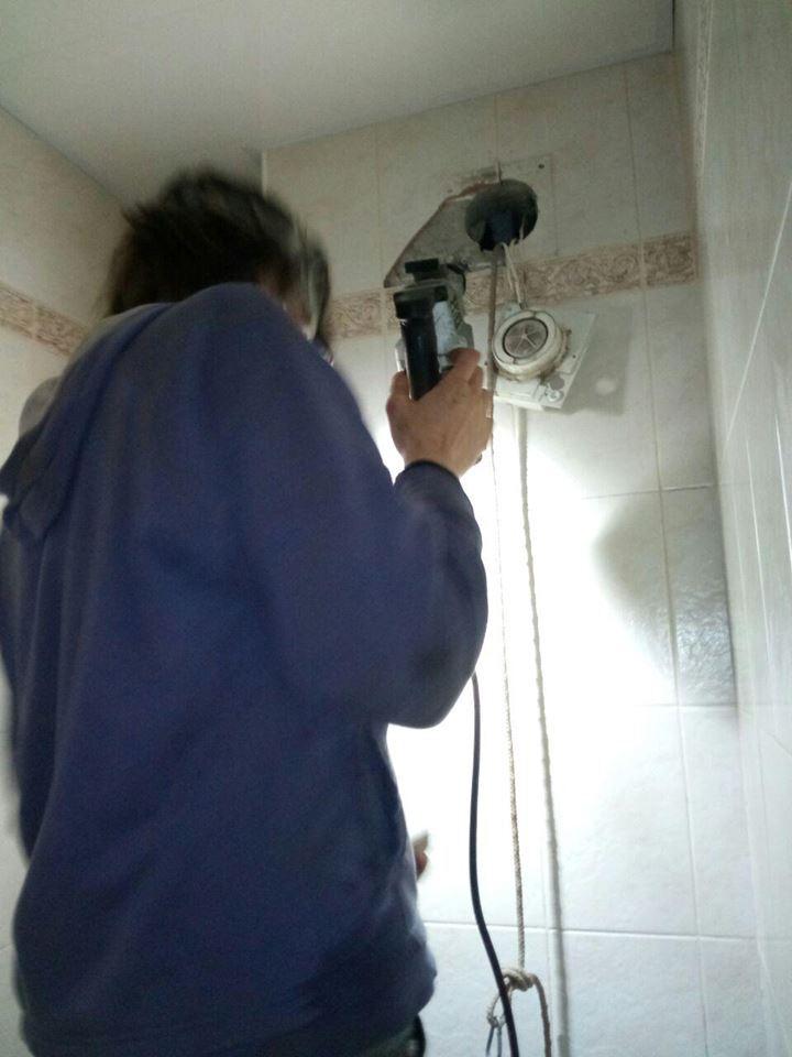 Застрял в вентиляции: в Киеве спасли енота