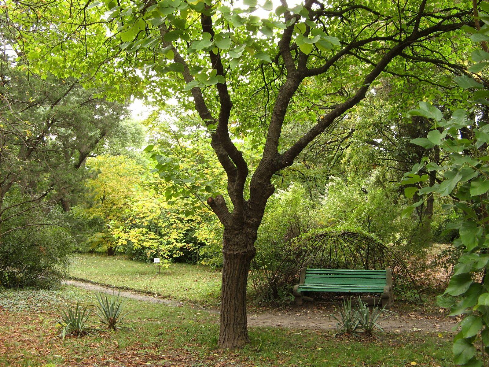 Одеський ботанічний сад