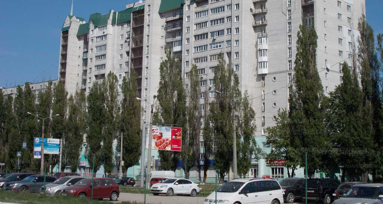 Тополя на ул. Академика Павлова летом