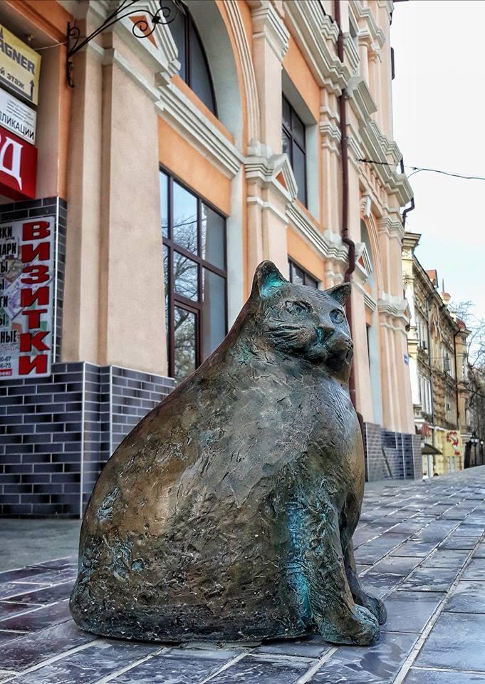 В Одесі увіковічули найтовстішу базарну кішку