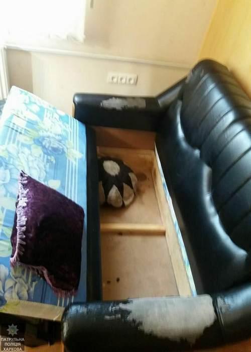 Той самий диван