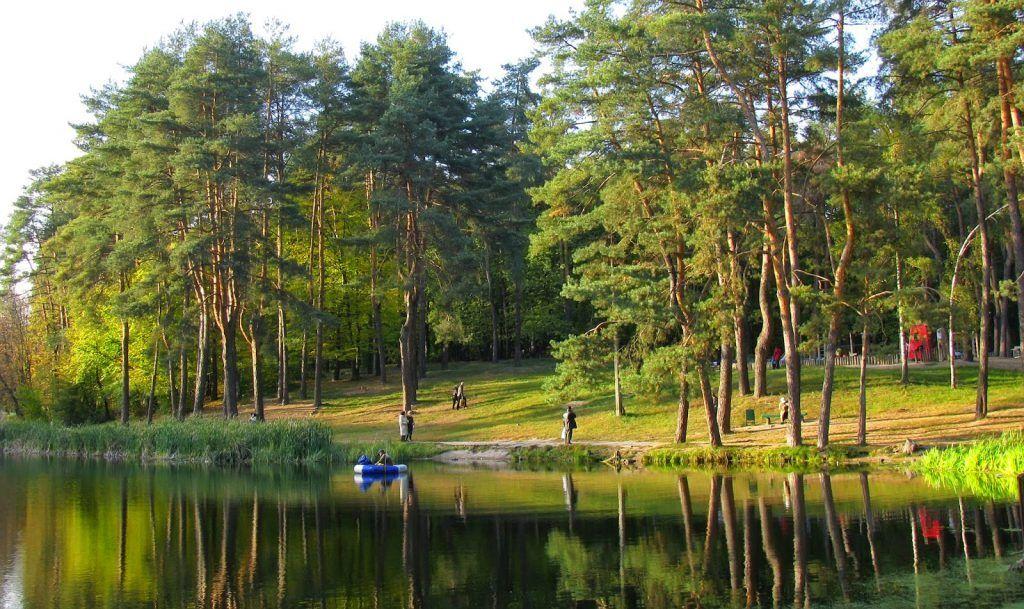 Де посмажити шашлики в Києві: найкращі місця