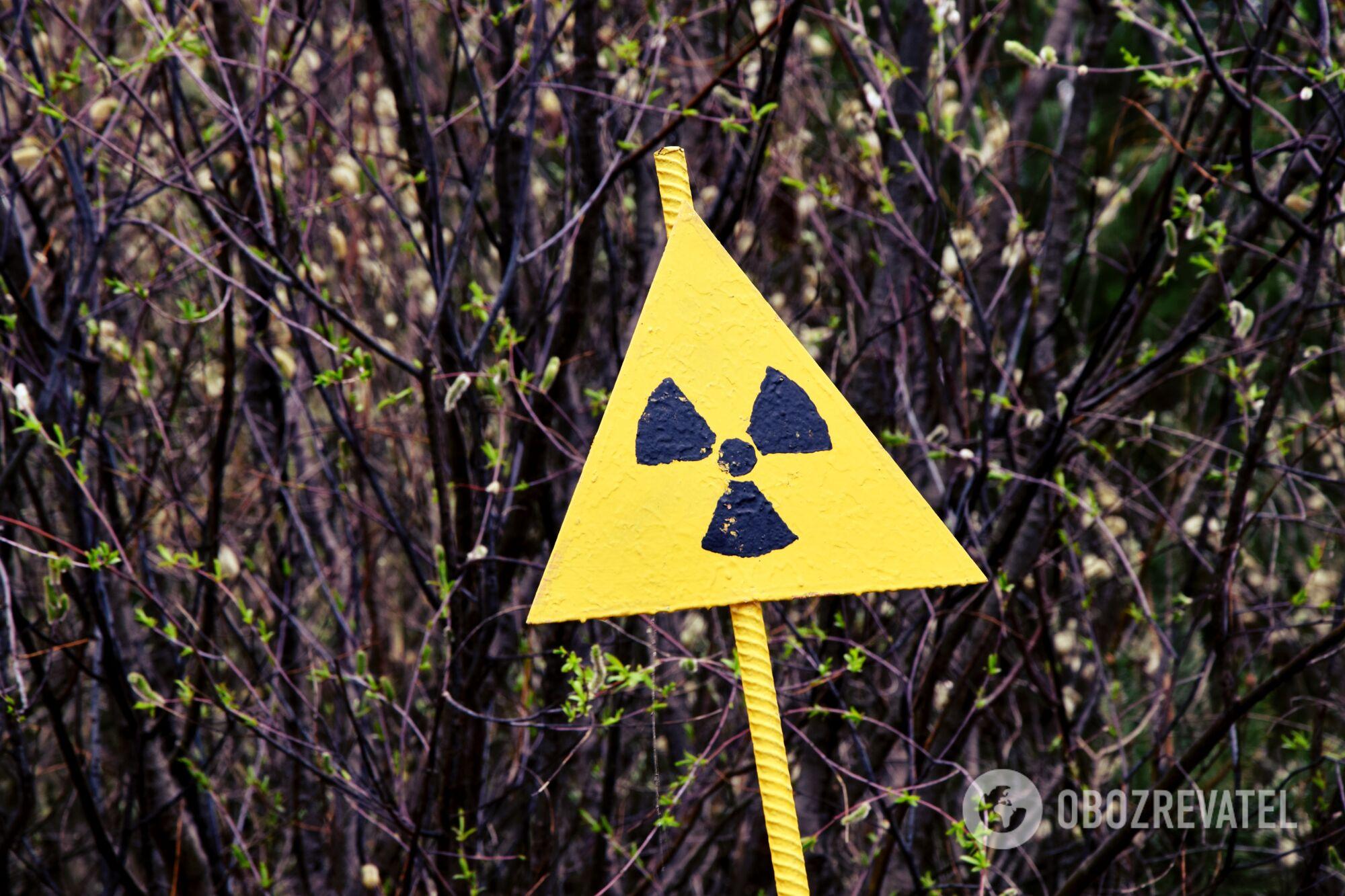 Чернобыль, или туда и обратно: репортаж из мертвой зоны