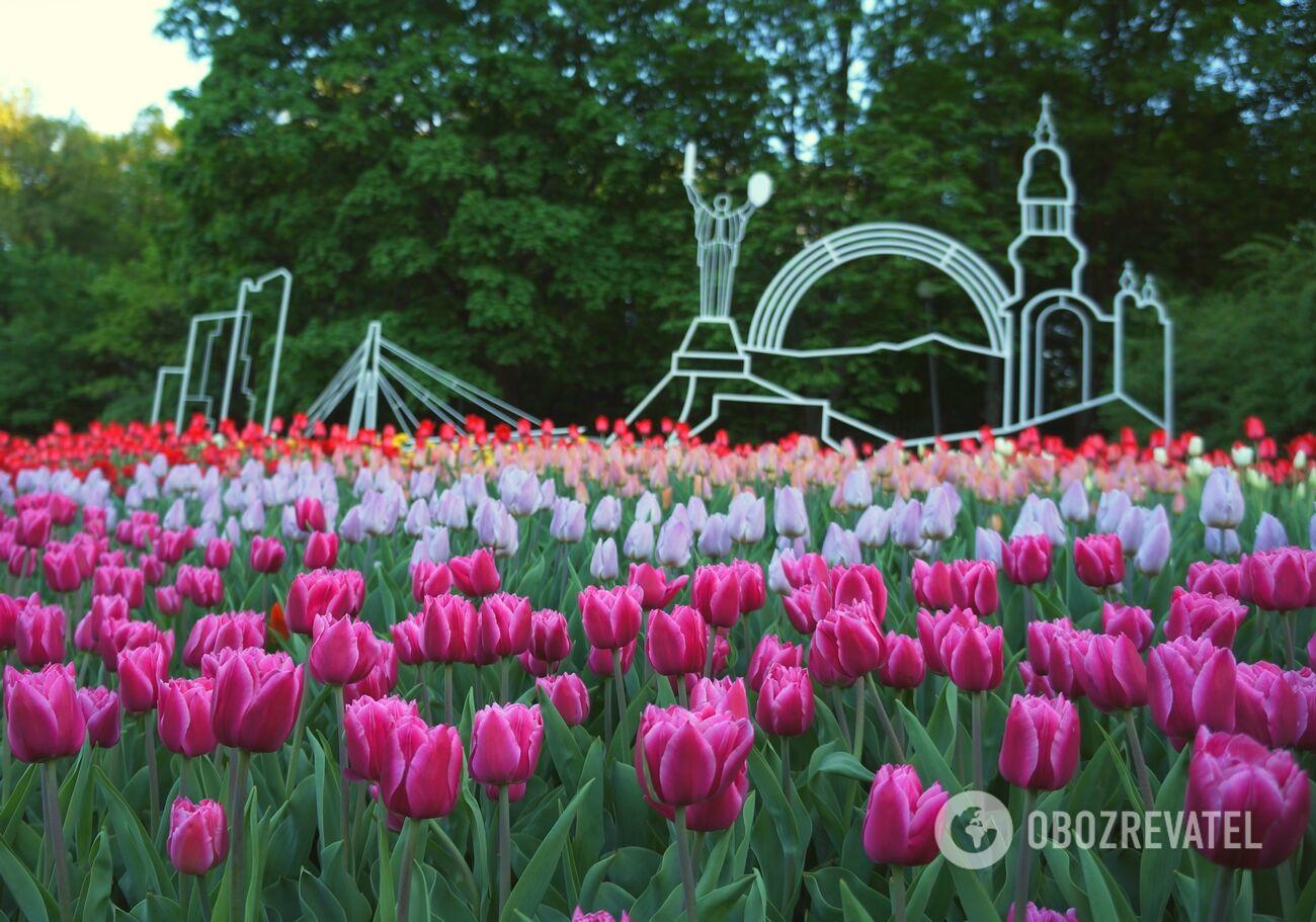 """Выставка тюльпанов """"Вокруг света"""""""