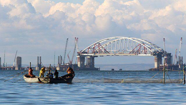 Разрушение Крымского моста спровоцирует страшные процессы – эколог.Россия продолжает сооружение Крымского моста через Керченский пролив в оккупированный Крым.