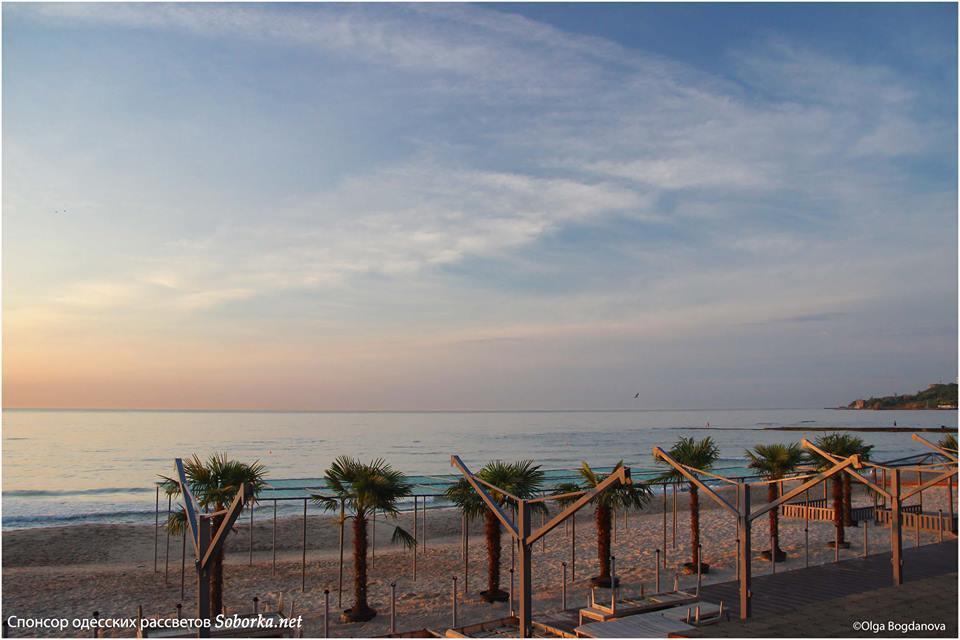 """""""Египет отдыхает"""": на пляже в Одессе появилась экзотика"""
