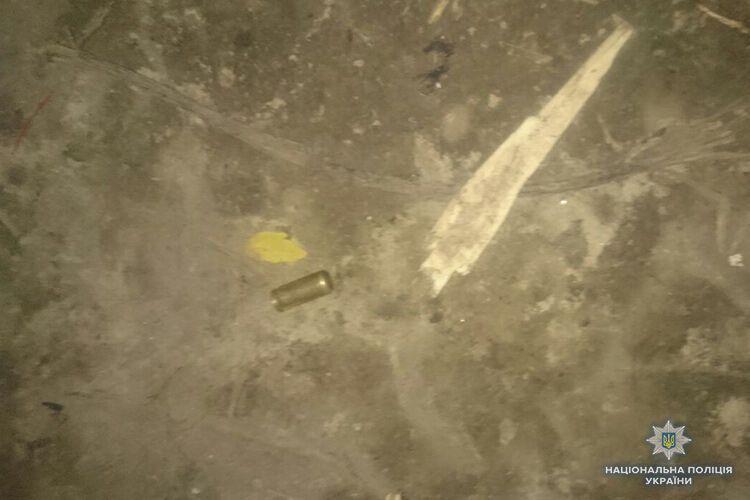 Стріляли і били: у Тернополі напали на табір ромів