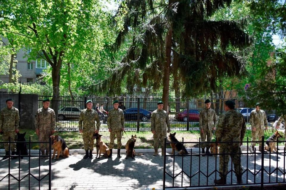 В Харькове появились рыжие пушистые охранники