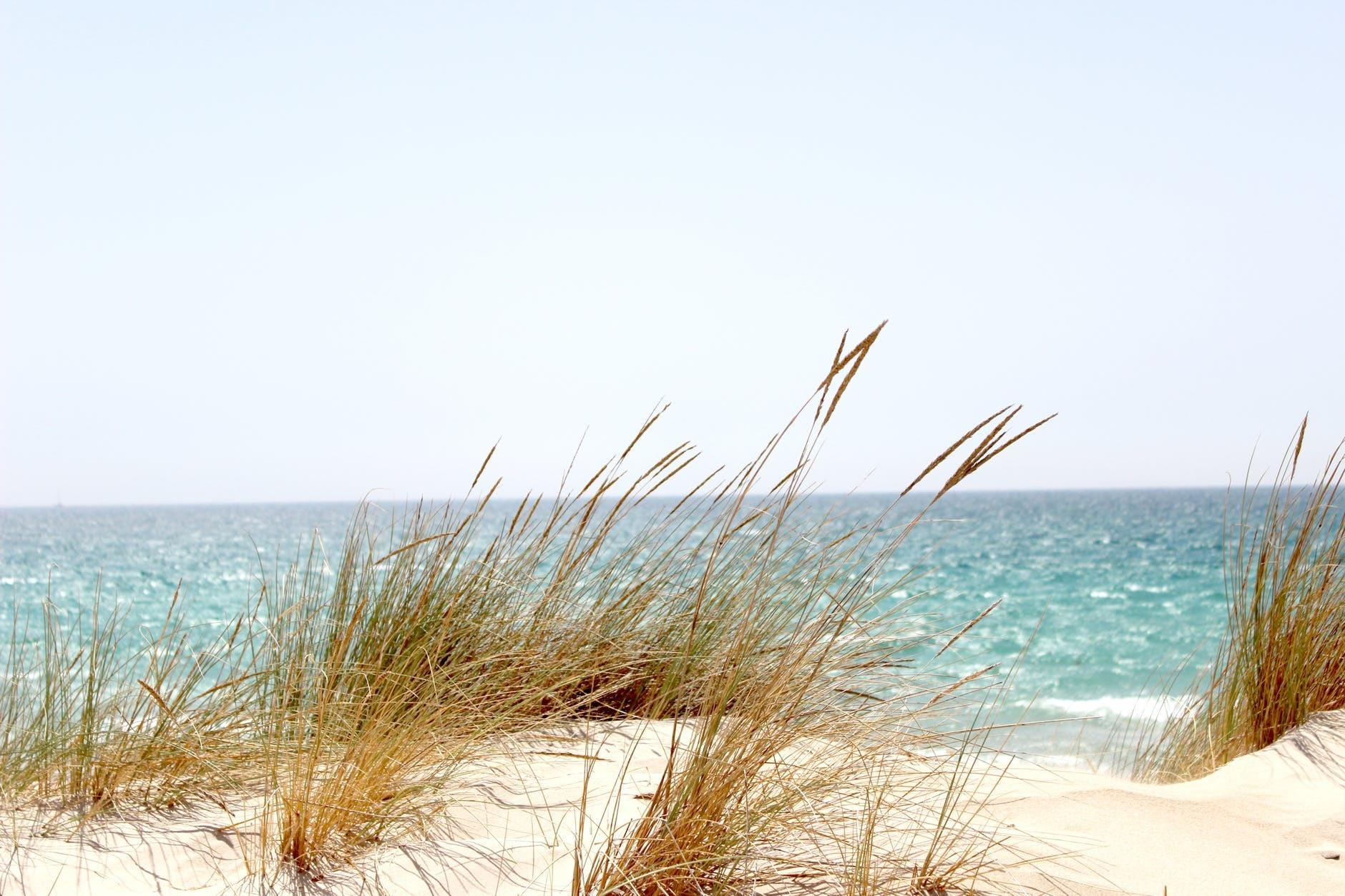 Чудо-курорти Азовського моря