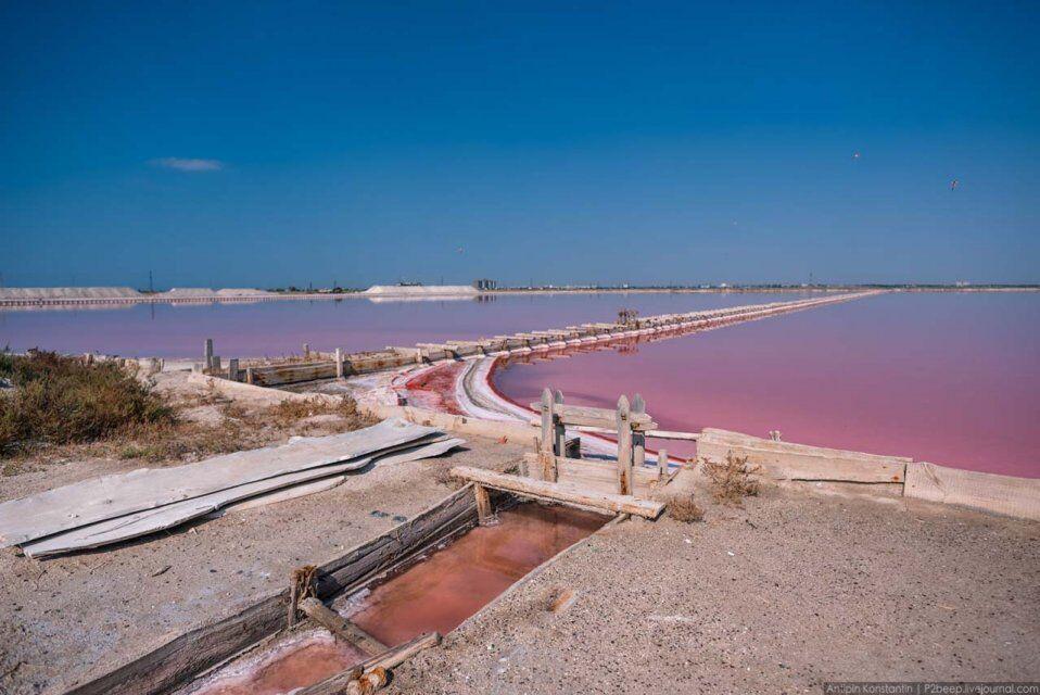 Розовое озеро на Херсонщине: невероятные фото