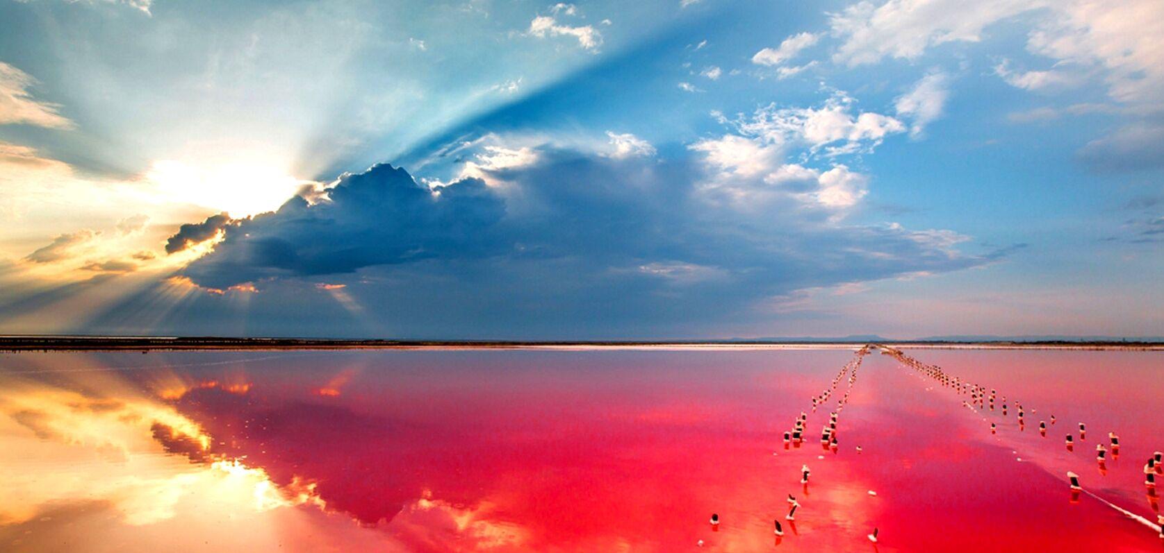 Розовое Лемурийское озеро на Херсонщине: опубликованы невероятные ...