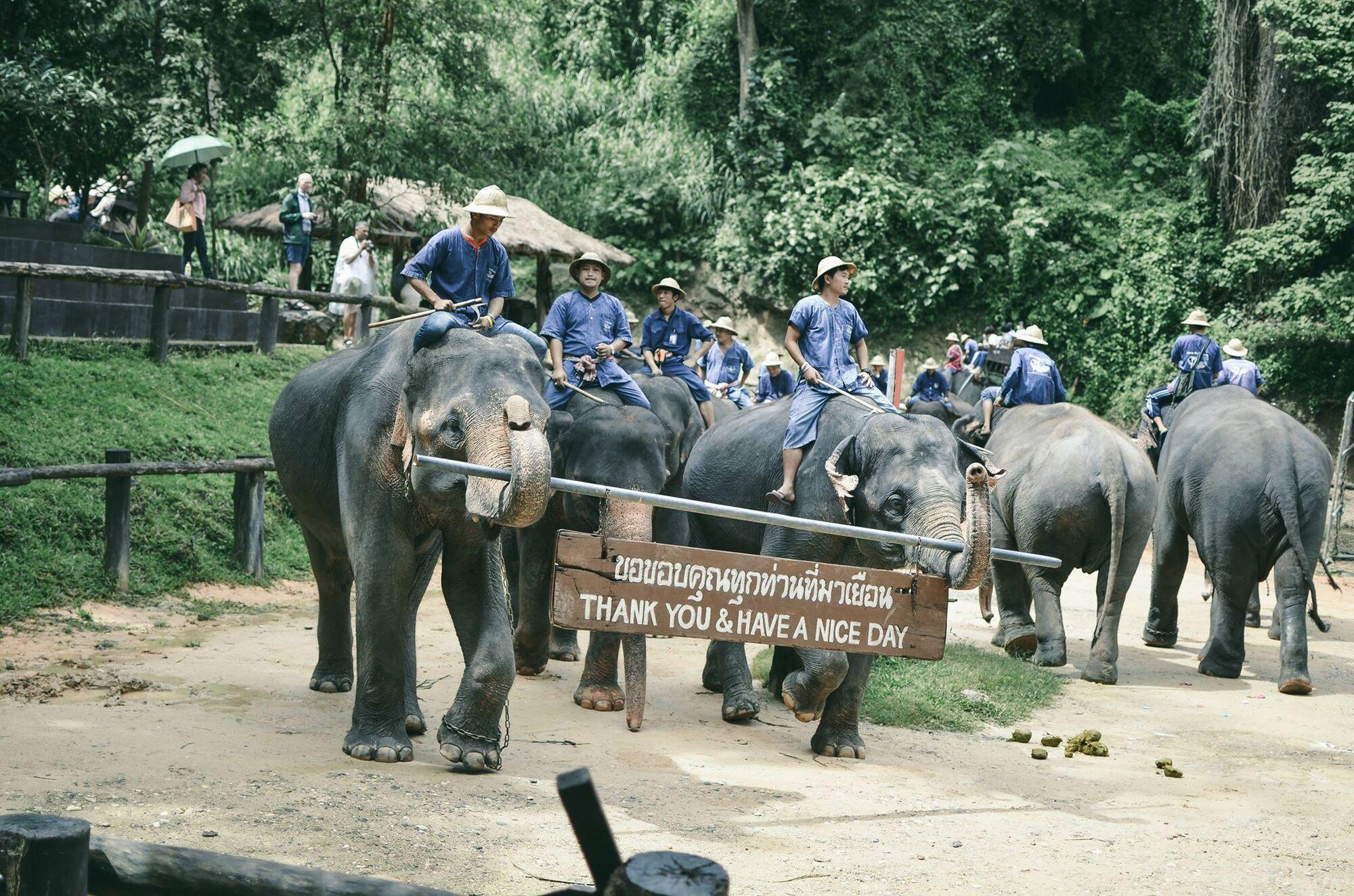 """Люди зникали пачками"": про темну сторону райського Таїланду"