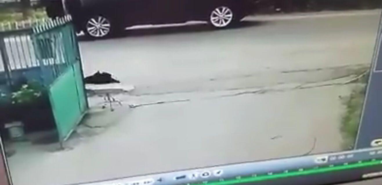 """""""Ось такий народ"""": жорстоке вбивство собаки потрапило на відео"""