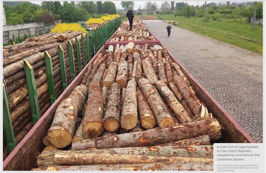 Эшелоны с украинским лесом