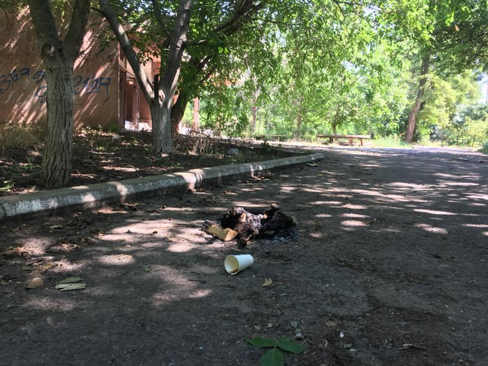 """""""Сначала пробили палкой живот"""": в Одессе устроили расправу над животным"""