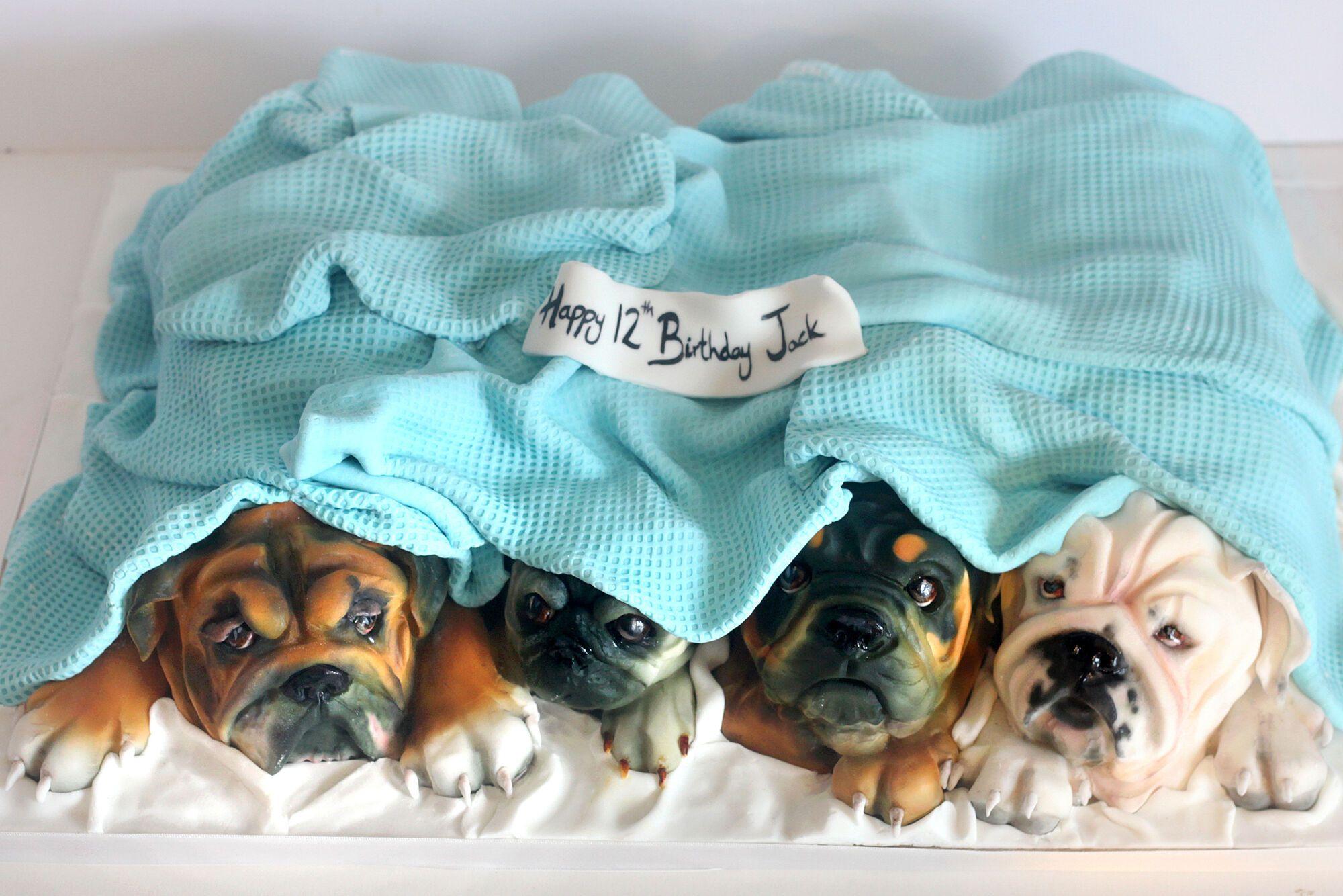 """""""Прояв шкуродерства!"""" Кондитера зацькували в мережі за реалістичні торти у вигляді тварин"""