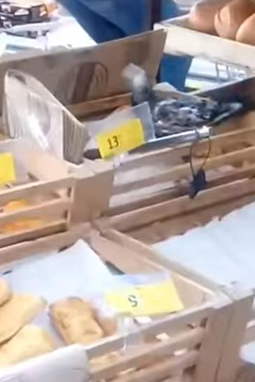 Дзьобав їжу: у відомому супермаркеті Києва помітили птаха