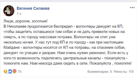 У Миколаєві бояться жахливих убивств собак