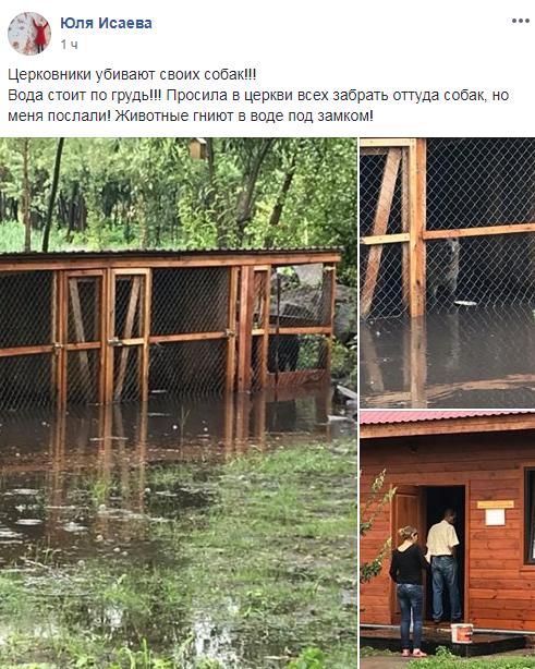"""""""Тварини гниють"""": церква в Києві налякала мережу своїм вчинком"""