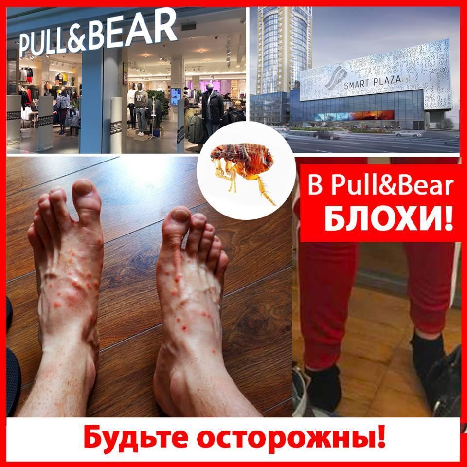 """""""В магазине блохи"""": в Киеве известная торговая сеть попала в громкий скандал"""