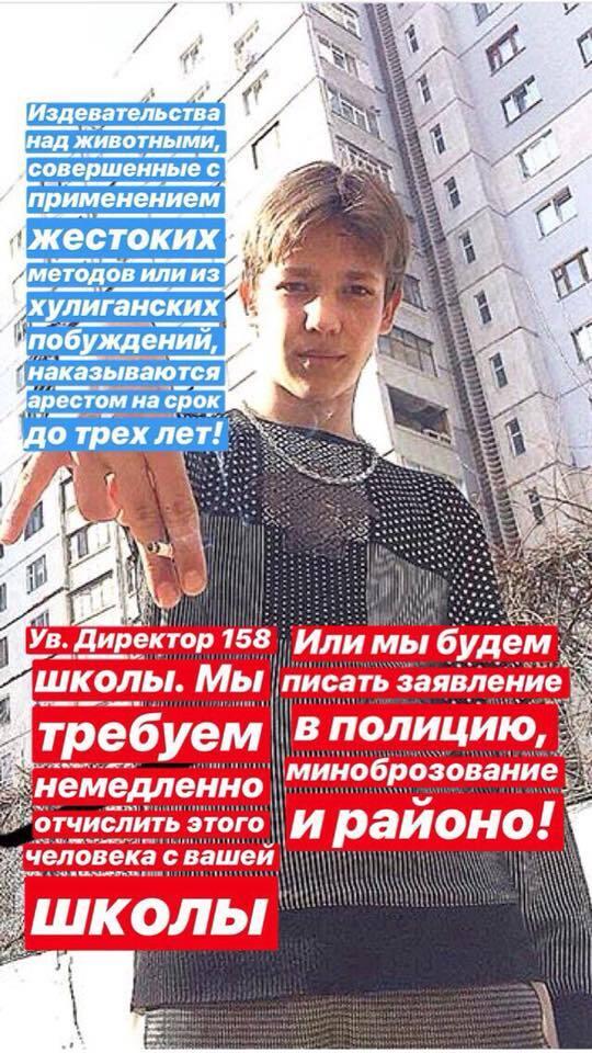 Школяр-садист убив голуба і виклав відео в мережу: українці в шоці