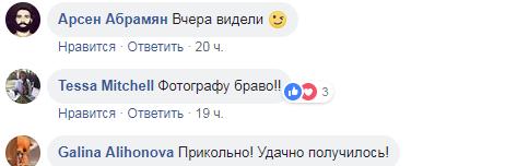 """""""Браво фотографу!"""" Мережу вразив неймовірний Харків у негоду"""