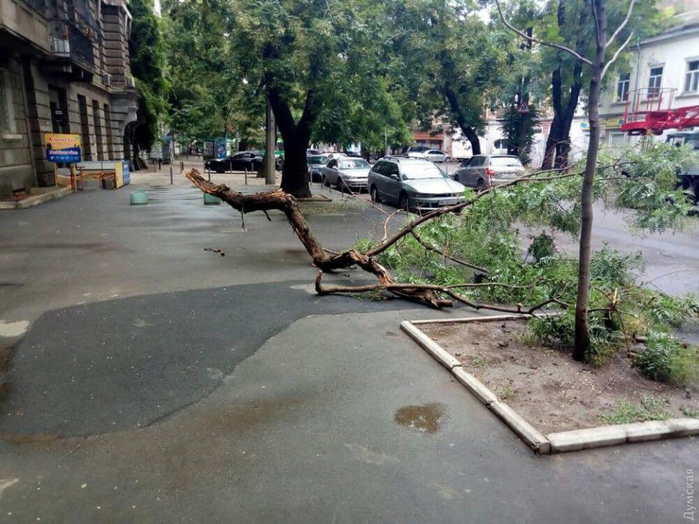 Одессу накрыла стихия: жуткие фото последствий