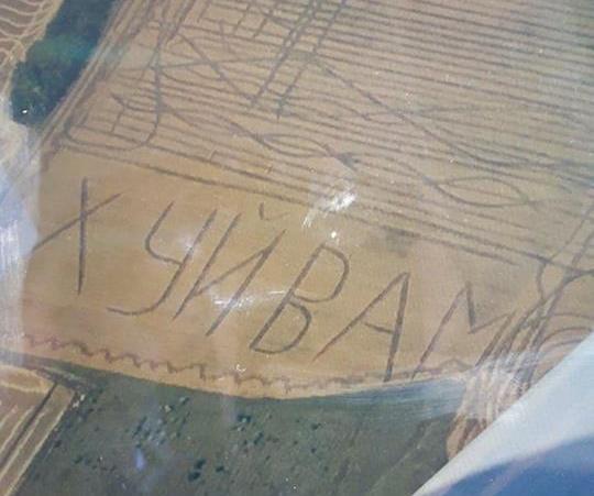На Одещині викосили непристойний напис на полі: фото