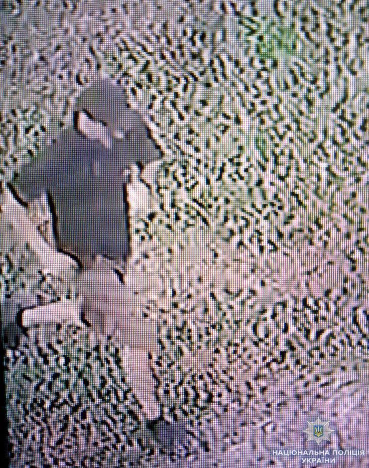 Полиция показала напавшего на активистку в Херсоне