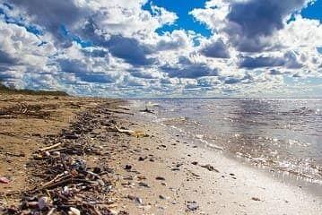 Опасность для туристов: в Одесской области запретили купаться в море