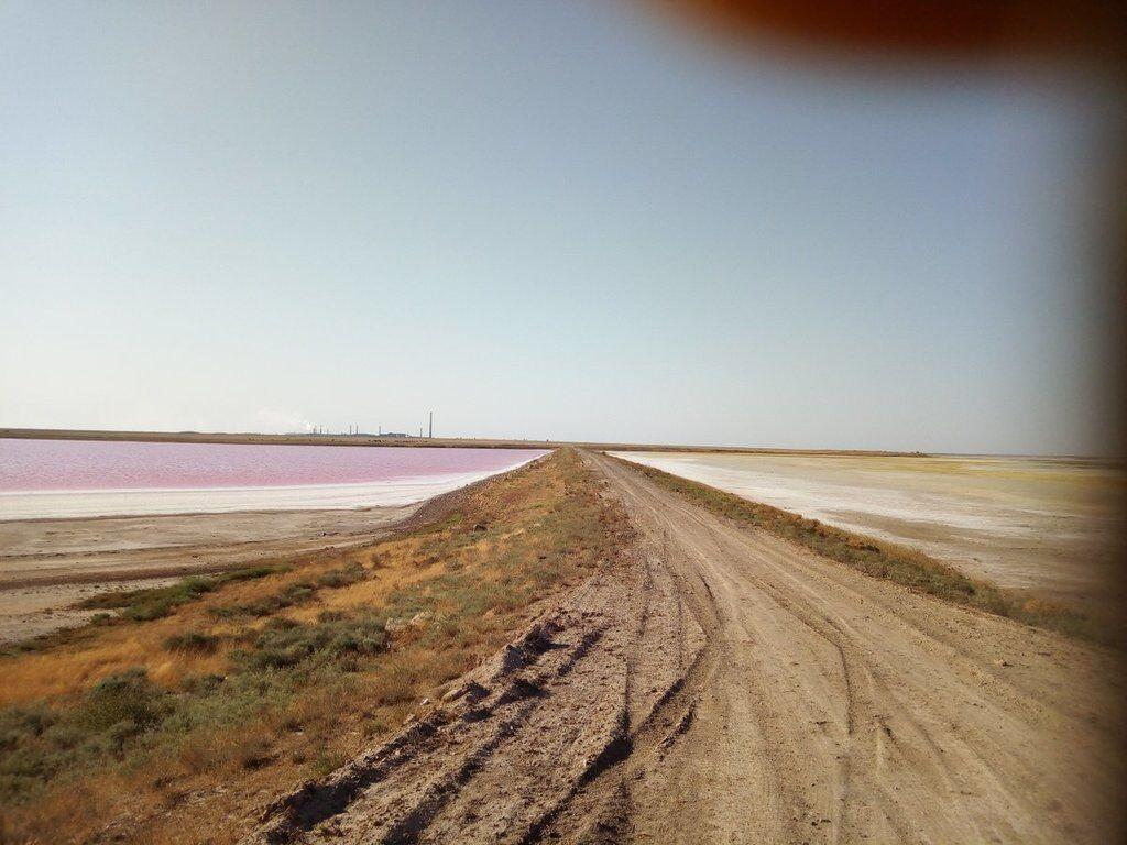 """""""Навіть озеро стало червоним"""": яке лихо накрило Крим"""