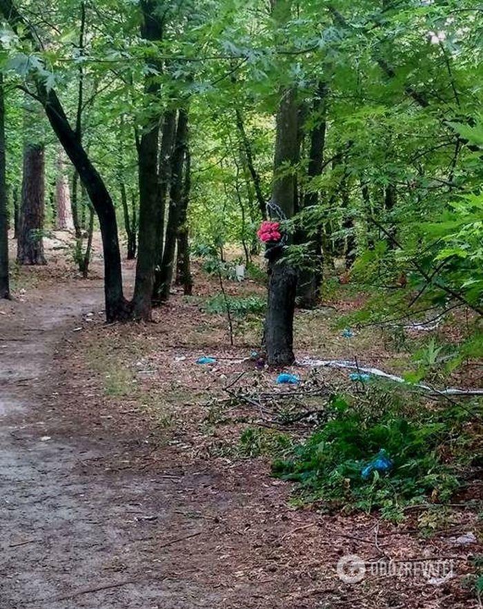 Место убийства в Пуще-Водице