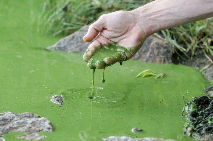 Как убивают Днепр: экологи рассказали, что творится с рекой