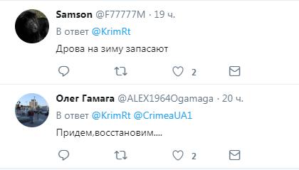 ''После них - хоть потоп'': оккупанты возмутили сеть ''лесоповалом'' в Крыму