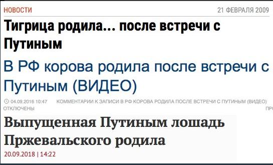 РосЗМІ висміяли за пологи тварин після візиту Путіна