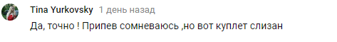 Настю Каменских обвинили в плагиате: что произошло