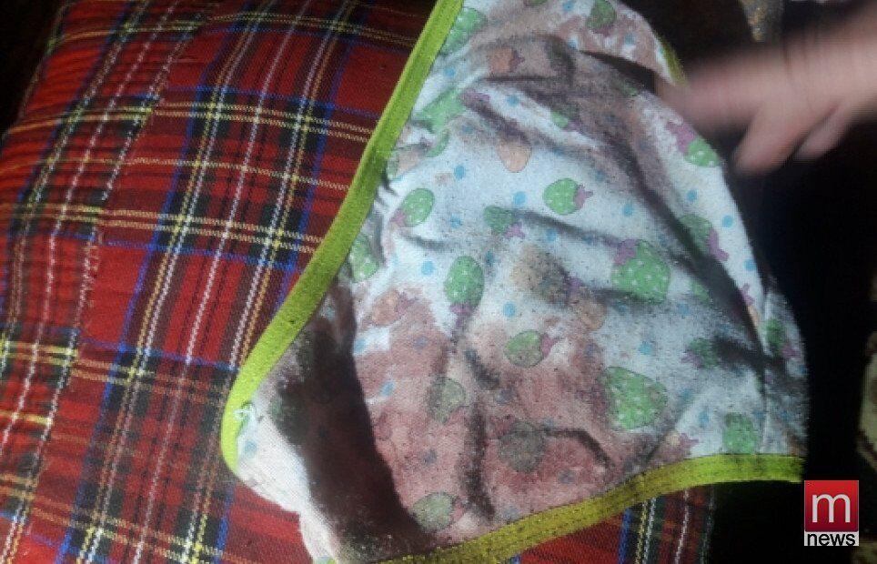 Прямо в кроватке: в Мариуполе крыса чуть не загрызла 4-летнюю малышку