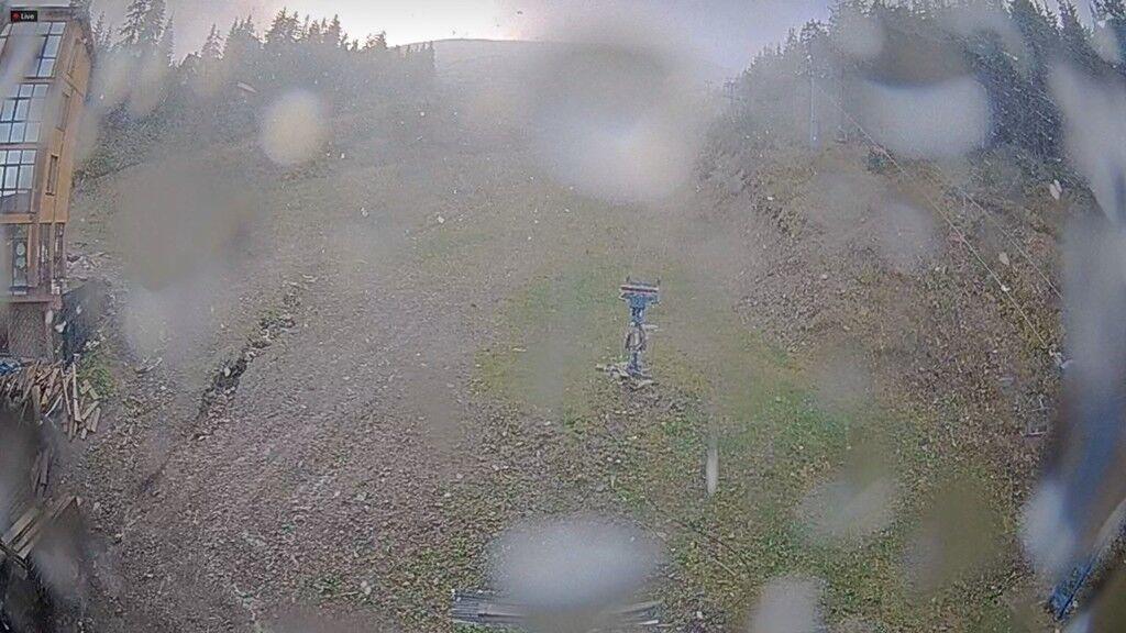 В Украине выпал первый снег: фотофакт