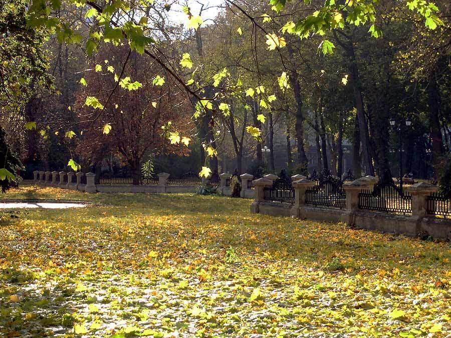 Куда пойти погулять осенью? Самые красивые парки Киева